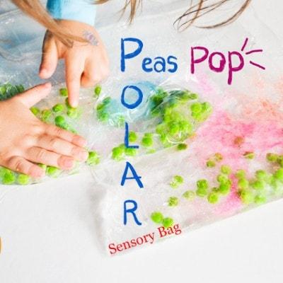 Polar Peas Pop Sensory Bag