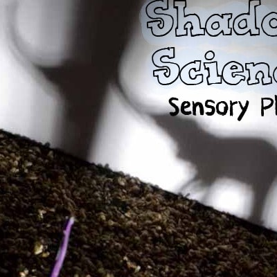 Shadow Science Sensory Play for Kids