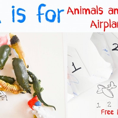 Letter of the Week A-Z Series: A is for Animals & Airplanes