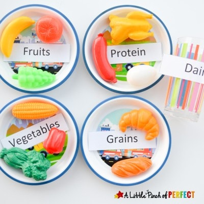 Science for Kids: Learning about the 5 Food Groups + Printable