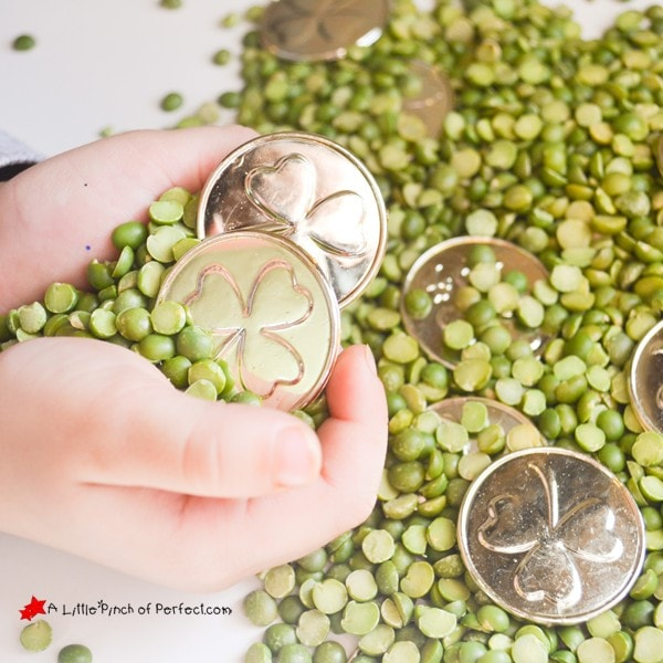 St. Patrick's Day Green & Gold Sensory Activity: A fun sensory bin filled with green peas and gold coins