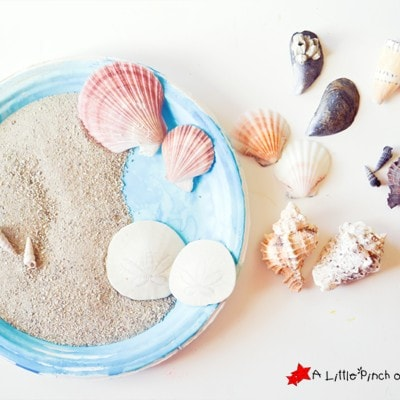 Ocean Sensory Play & Matching Game for Kids
