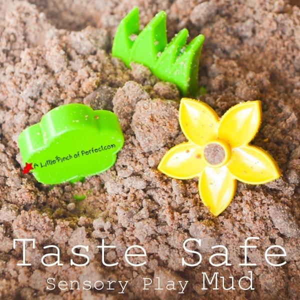 Sensory Play: Taste Safe Mud Recipe