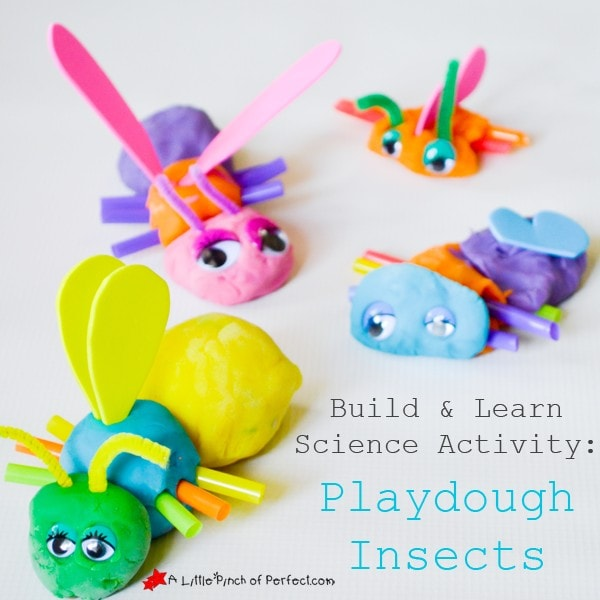 BUILD AND LEARN SCIENCE ACTIVITY: PLAYDOUGH INSECTS FOR HANDS ON LEARNING