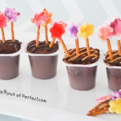 May Flower Pudding Snack Packs-An Artistic Snack for Kids