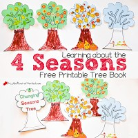 4 Seasons Printable Tree Activity for kids to decorate as they learn about the changing seasons: spring, summer, fall, winter