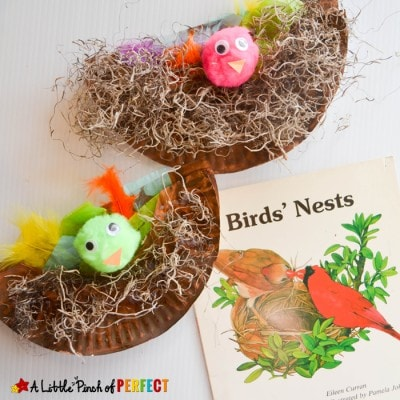 Paper Plate Bird Nest Craft the Kids will Cheep About