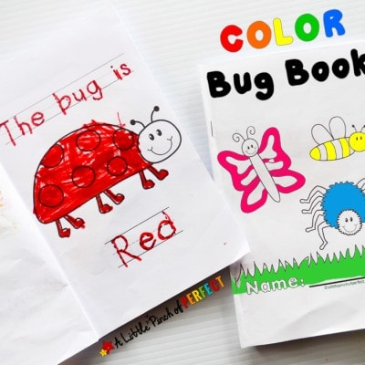 Color The Bug Free Printable Emergent Reader Book