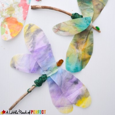 Beautiful Dragonfly Stick Craft: Easy Nature Craft for Kids