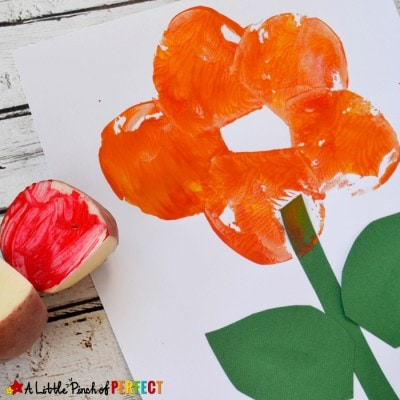 Flower Potato Stamping Craft and The Tiny Seed Free Printables