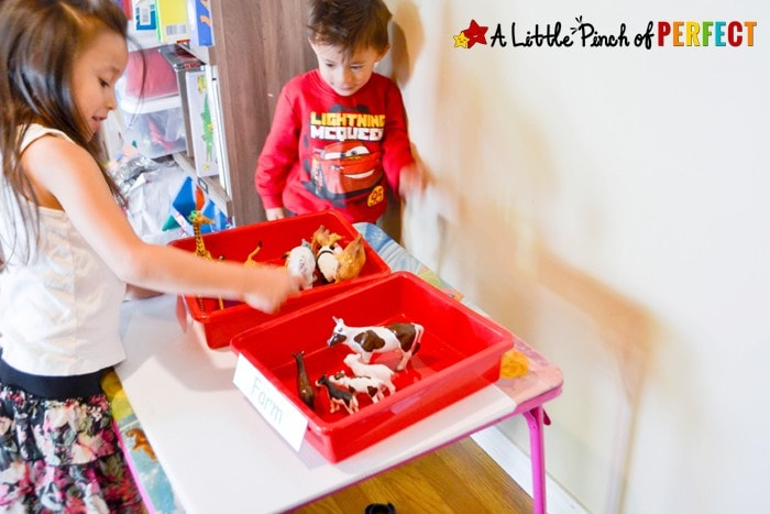 Who Lives in the Zoo Sorting Tray for Kids