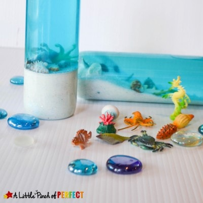 Mini Aquarium in a Bottle: Ocean Sensory Play to Learn and Explore