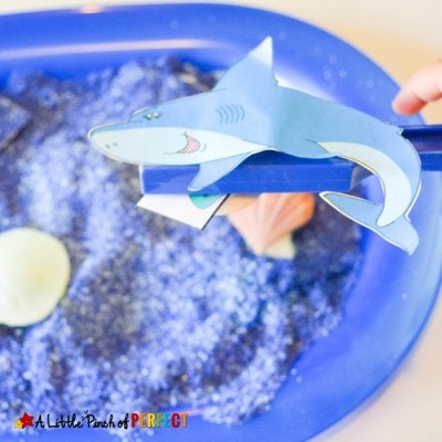 Learning about Shark Senses Activity and Free Printable