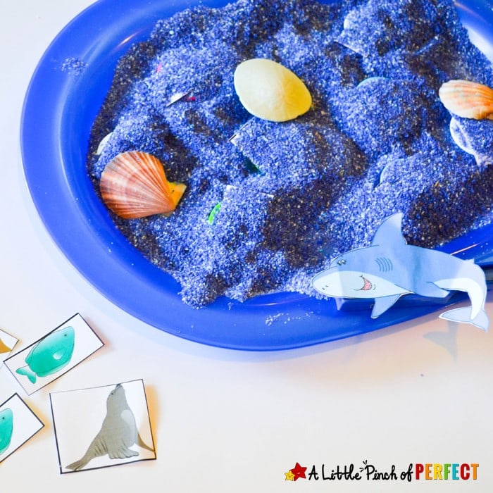 Learning about Shark Senses Activity and Free Printable: Kids are able to catch fish without being able to see them (ocean, sensory play, sand, shark week)