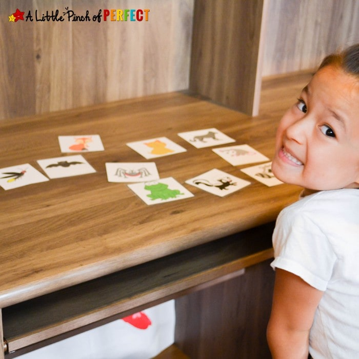 Learning about Nocturnal Animals Free Printable Activities for Kids: Includes 13 animal cards, a pretend game, memory matching, and a sorting activity (owl, bat, fall, science, preschool, kindergarten)