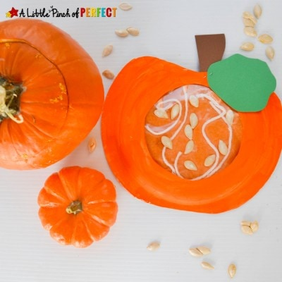 Learning about what's Inside a Pumpkin Paper Plate Kids Craft