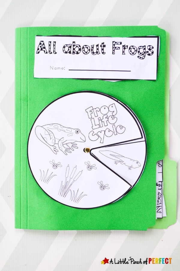 Learn about frogs and their life cycle with this activity pack that includes interactive notebook pages, a frog craft, science experiment, and more. This pack has perfect ideas for you to incorporate into your lesson about frogs.
