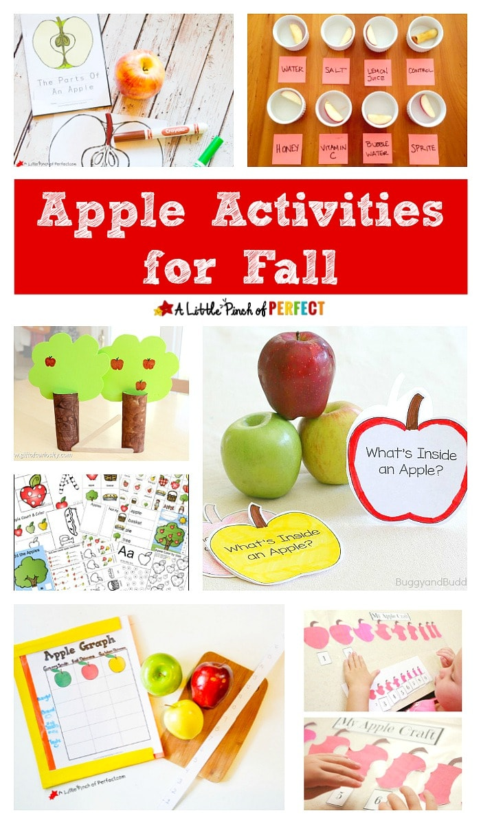 Fall Apple Activities: Math, Language, Science, Printables, Crafts and More! (Preschool, Kindergarten)