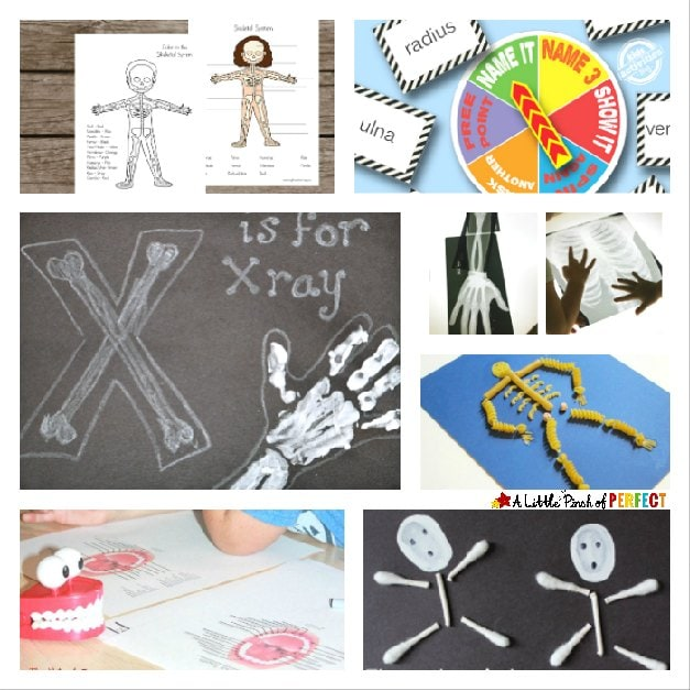 This Fall, our children are learning about bones! We had a lot of fun making some arts and crafts about bones. We also found some printables that helped a lot with the lesson.