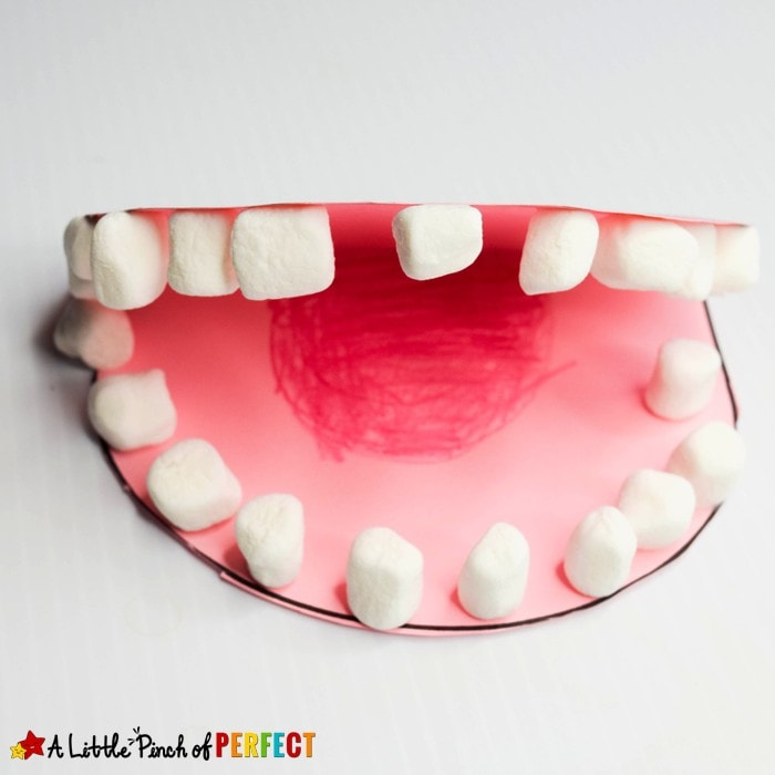 Learning About Teeth Activities and Free Printables: Activities to help children learn about dental hygiene including free printables, crafts, hands on activities, and more. (#dentalhealth #handsonlearning #kidsactivities)