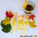 "With this easy science experiment children can see the different pigments found in leaves to help answer the question, ""Why do leaves change color?"" This activity includes a free printable leaf color chart. (#kidsactivity #science #scienceexperiment #Fall #homeschool)"