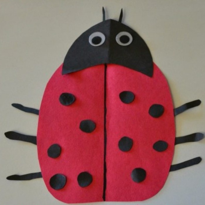 This image has an empty alt attribute; its file name is Ladybug-Chant-and-Math-Game-Capri-Plus-3.jpg