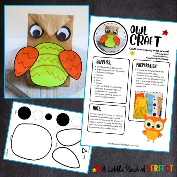 Owl Craft and directions Template