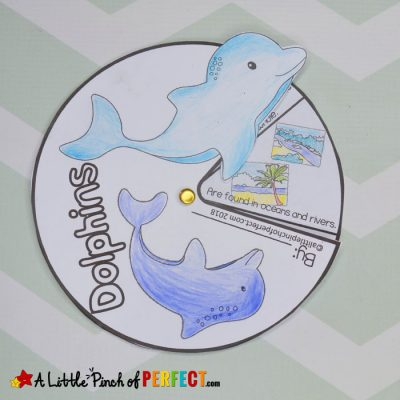 Learning About Dolphins: Activities for Kids and Free Printable